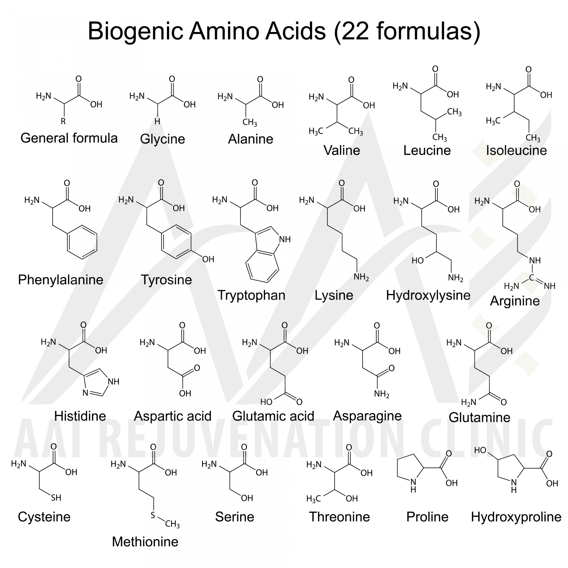 vitamins and amino acids