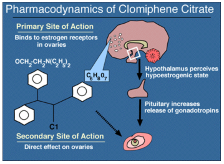 Clomiphene Citrate 50mg Tablets Side Effects