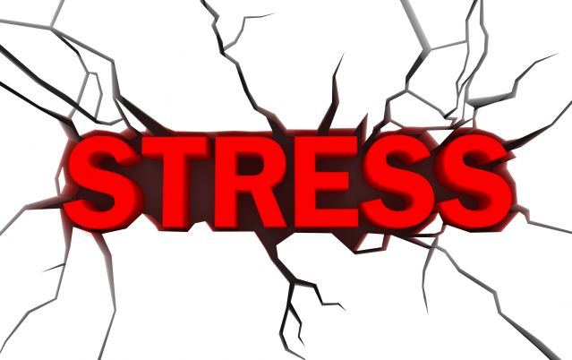 The Relationship Between Hormones and Stress