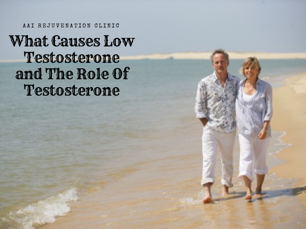 What Causes Low Testosterone and The Role Of Testosterone