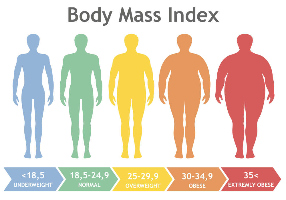 Body Mass Index (BMI) Measure of Body Fat