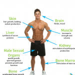 What Are the Symptoms of Low Growth Hormone?