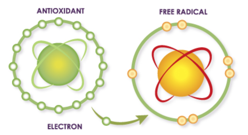 Defeating free radicals