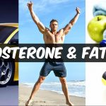 How Testosterone Affects Fat Loss: Real Science of Low-T